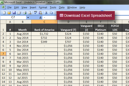 Export the Snowball Table to an Excel file