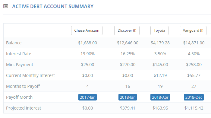 see how much you are paying in interest for each debt account