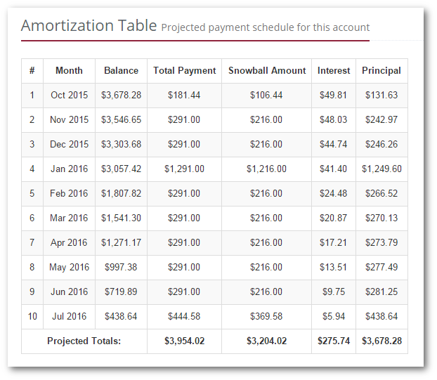 Individual account amortization table
